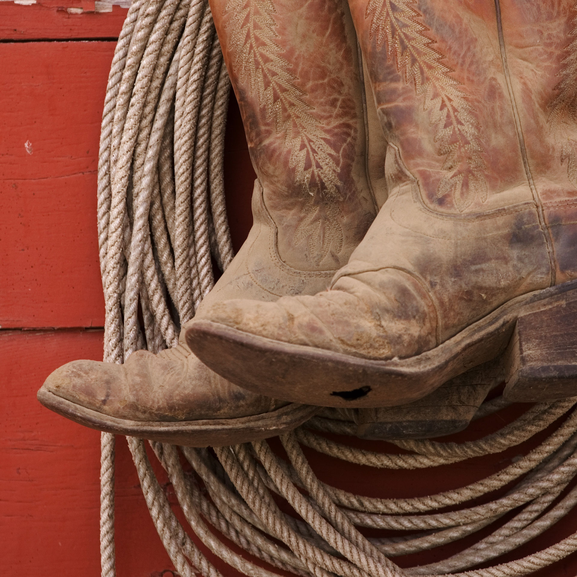Boot Care Tips: How to Maintain & Condition Cowboy Boots